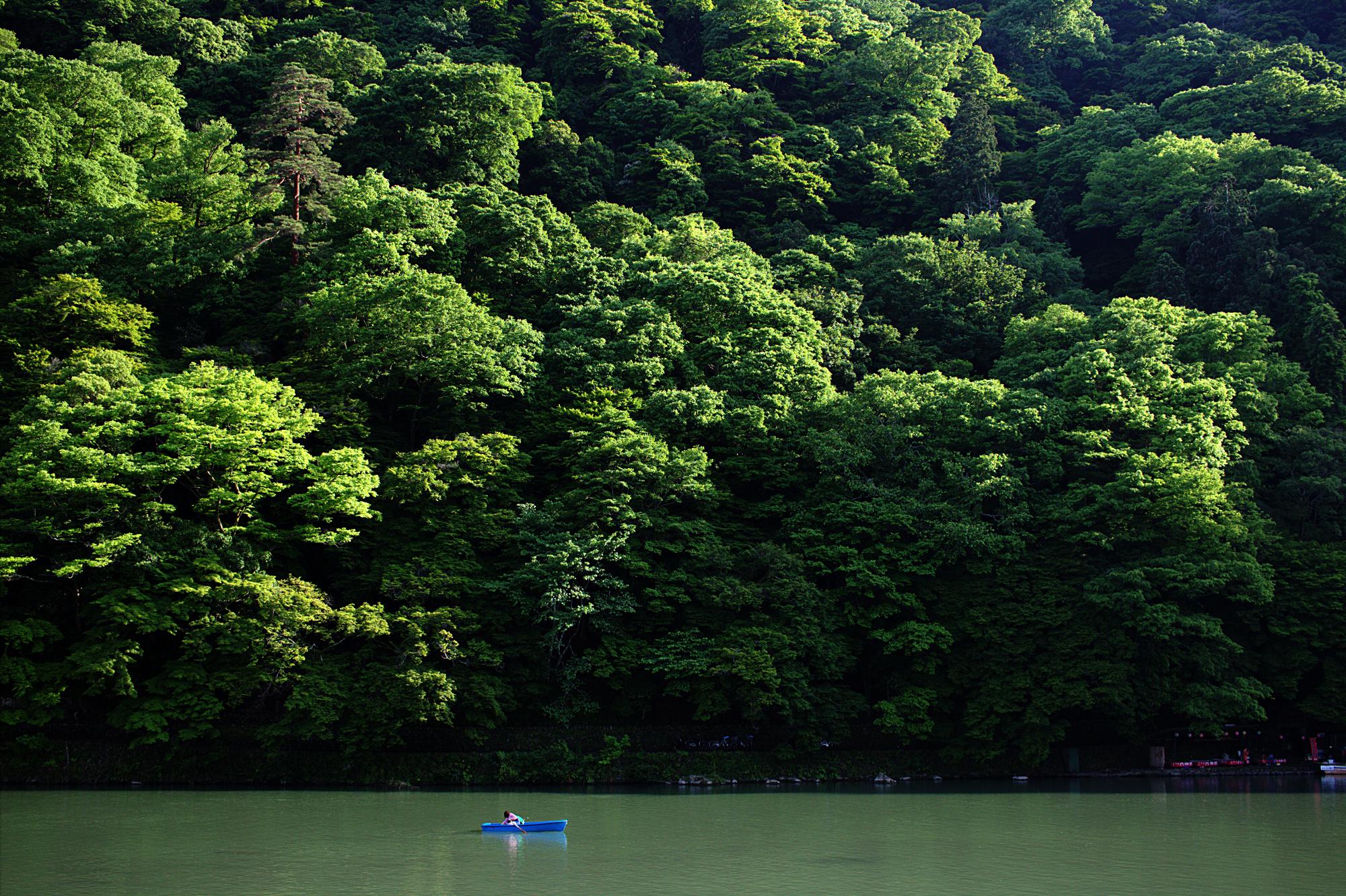 Loners, Katsura River bank, Kyoto. May, 2016